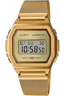 Часы CASIO A1000MG-9EF